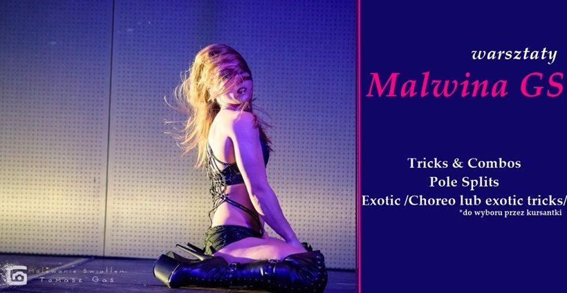 Warsztaty pole dance i exotic z Malwiną Ginter – Stenka